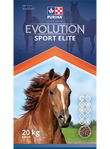 Evolution Sport Elite