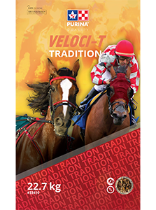 Veloci-T Tradition